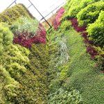 jardim-vertical-comercial-sp