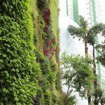 jardim-vertical-comercio