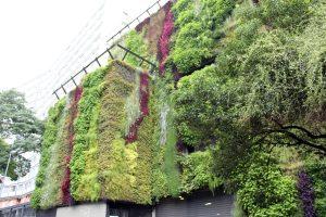 jardim-vertical-empresa-corporativo