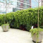 jardim-vertical-entrada-predio-comercial