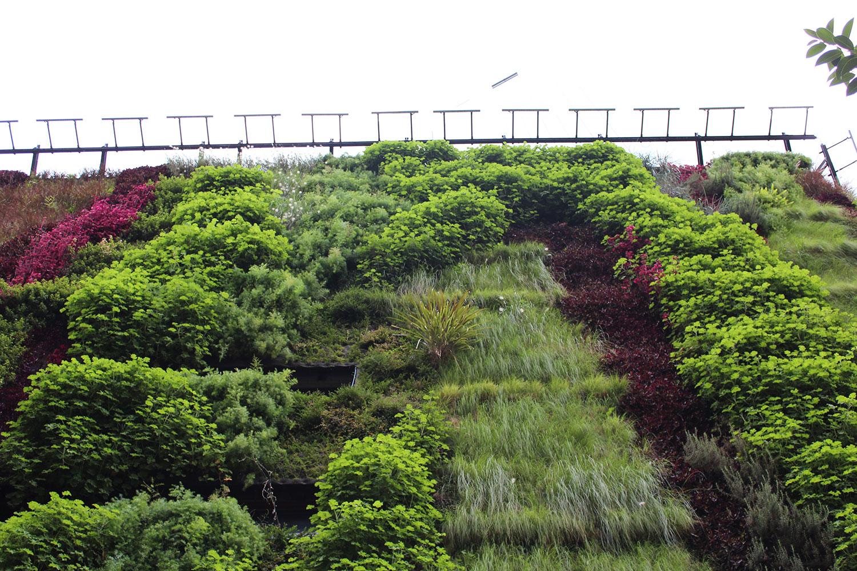 jardim-vertical-fachada