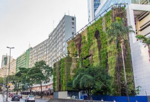 jardim-vertical-urbano