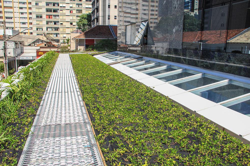 Telhado Verde HCOR